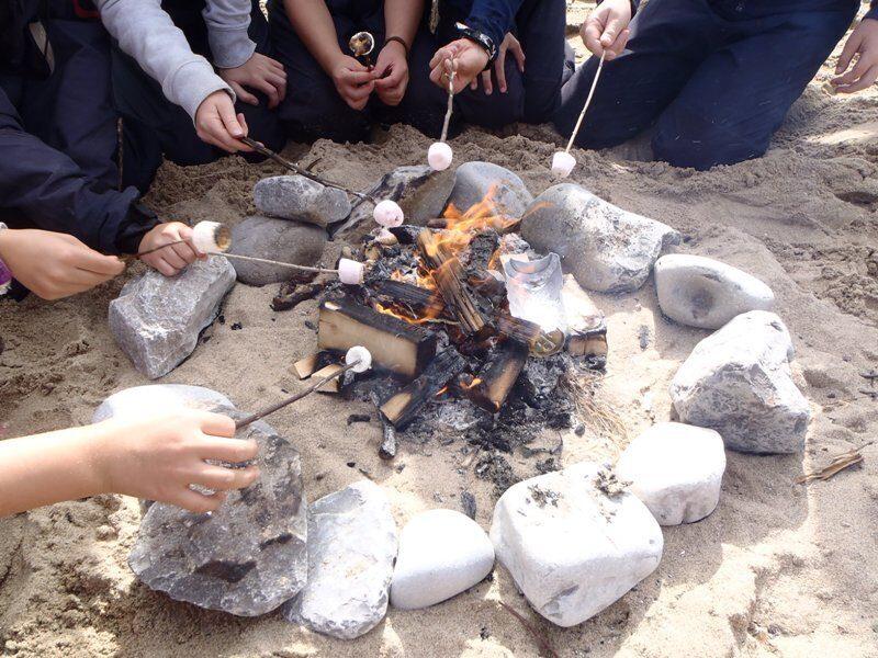 Beach Schools Gower Family activity